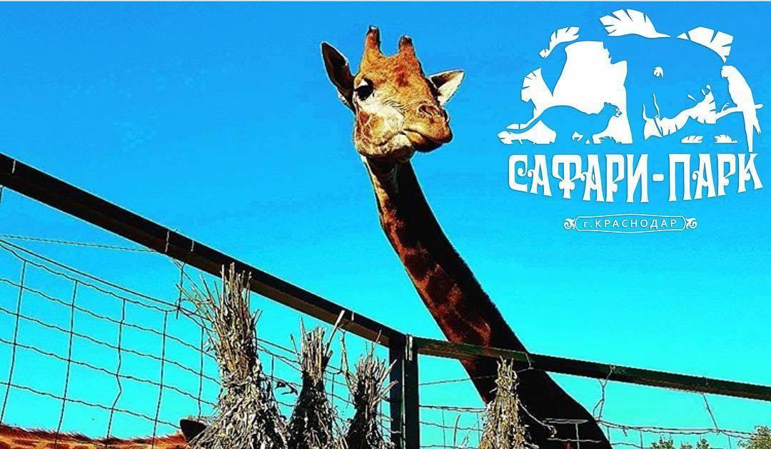 Краснодарский зоопарк «Сафари-парк»