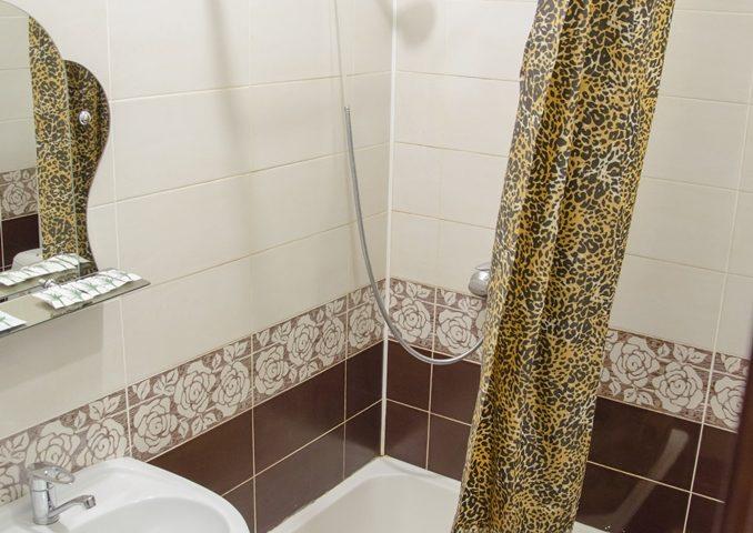 Ванная комната в 4-местном Стандарте
