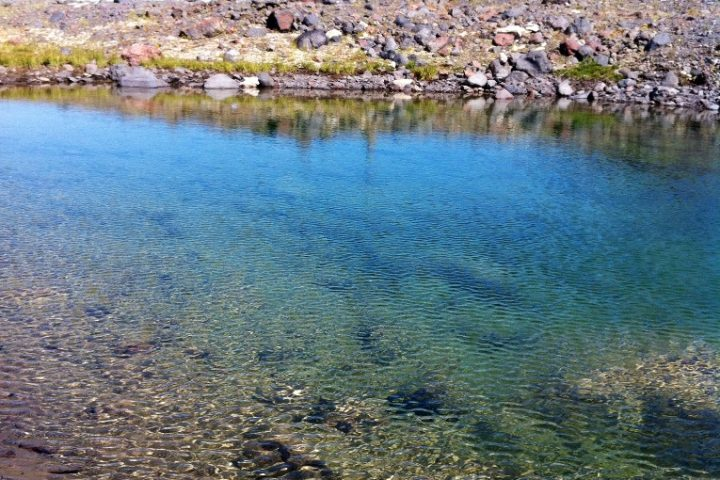 Креветочное озеро 1