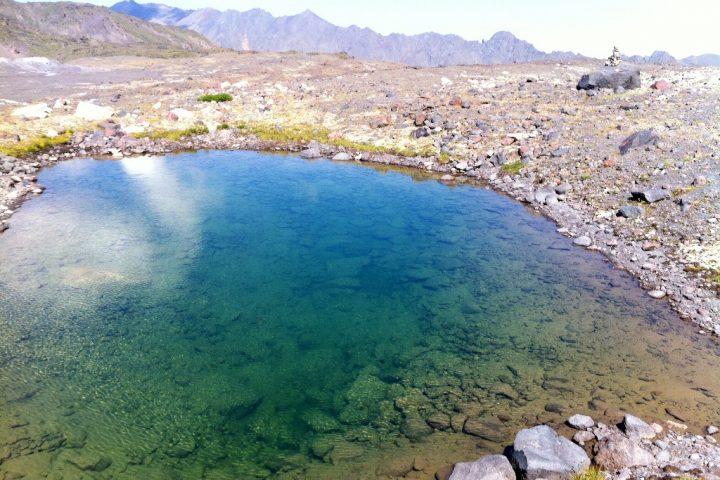 Креветочное озеро 2