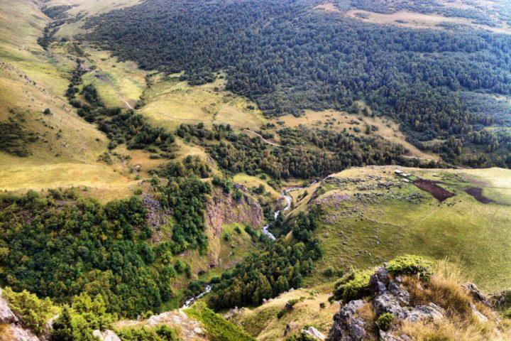 Леса в долине