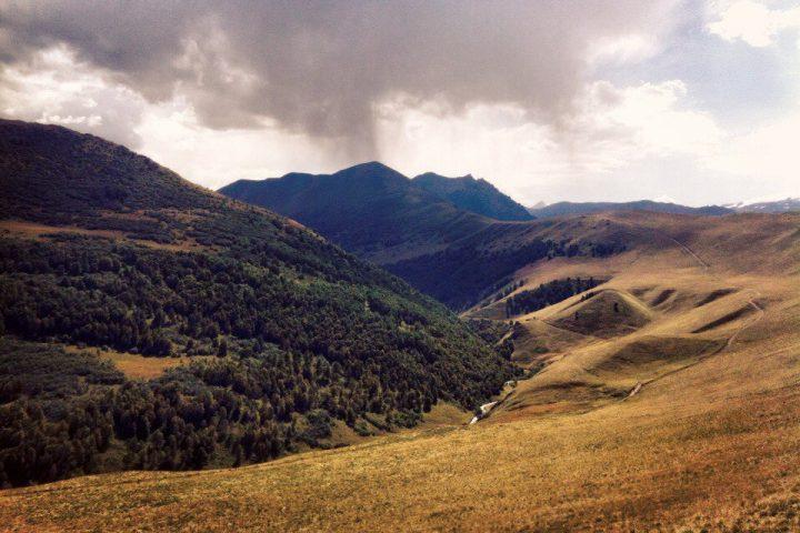 Леса в долине 2